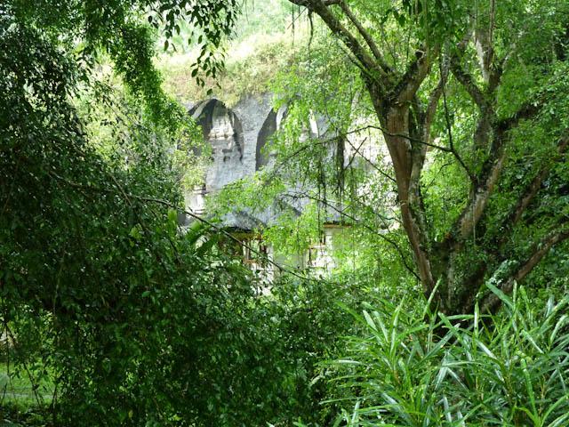 Imposante Natur auf Bali