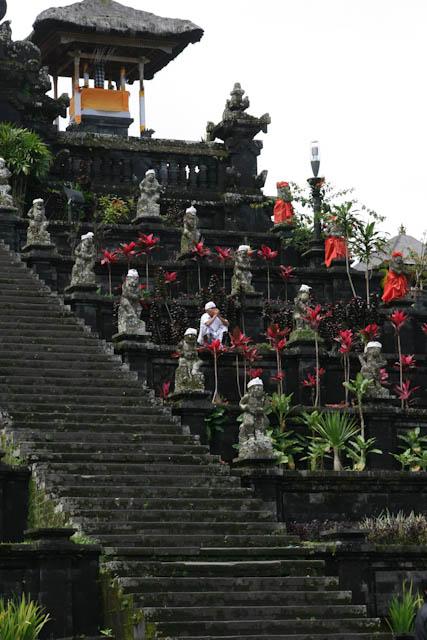 Der Tempelbaum ist oft in den Tempelanlagen der Insel zu finden