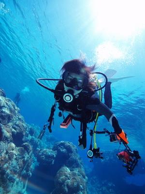 Taucher fbestaunen eine Unterwasserwelt mit Korallengärten